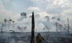 Brazil: Za Amazoniju ogromna sredstva iz kriminalne istrage