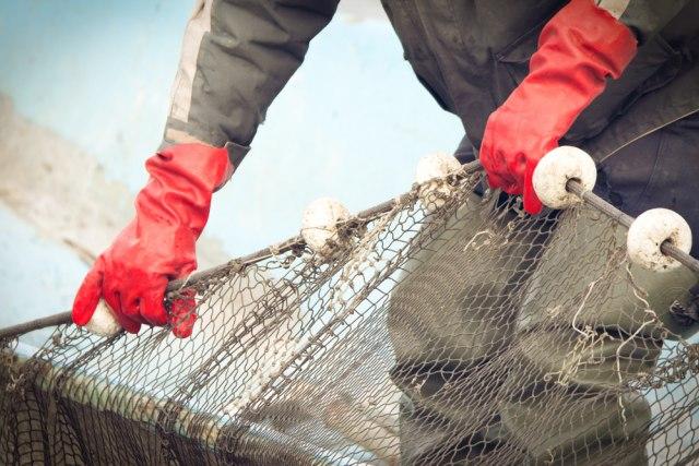 Britanci protiv francuskih ribara, iz Pariza zapretili: Struja