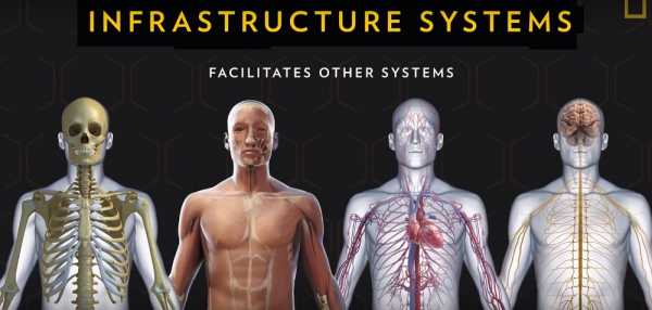 Britanska kompanija skladištila delove ljudskih tela