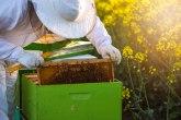 Brnabić: Država će nastaviti da podržava pčelare