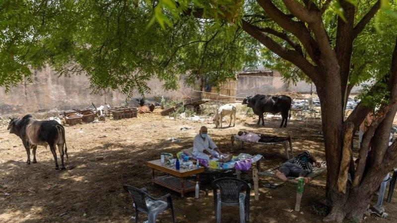 Broj zaraženih od korone u Indiji prešao 25 miliona