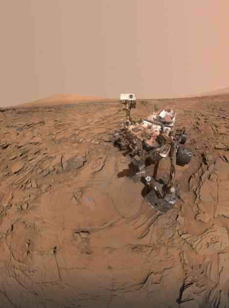ČUDO U SVEMIRU Na Marsu otkriven bor
