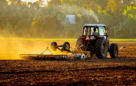 Cene u poljoprivredi veće za 15,8% nego u julu 2018.
