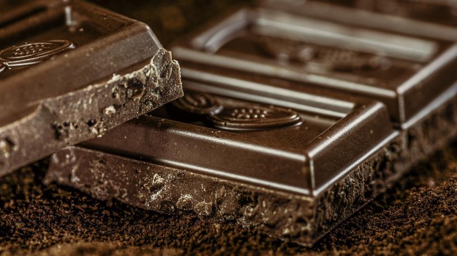 Čokolada ubija afričke šume