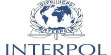 C. Gora od Srbije traži izručenje terorista
