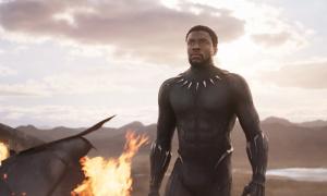 Crni panter sutra stiže u domaće bioskope! (FOTO+VIDEO)