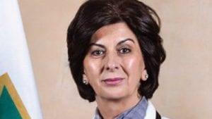 Curić nova predsednica BNV, Džudžo razrešen