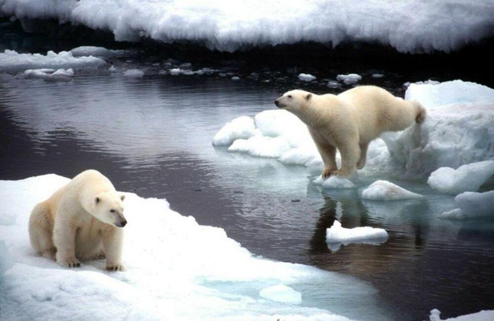DOK NE BUDE PREKASNO: Pokrenuta globalna kampanja da se uništavanje životne sredine tretira kao GENOCID