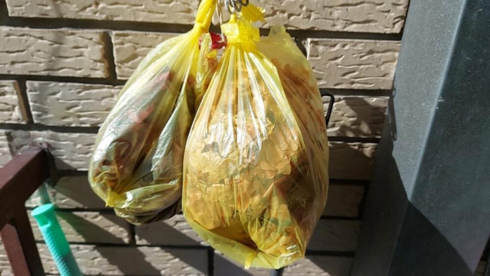 DOMAĆICE U NEVERICI UOČI VASKRSA: Kesa lukovine u samoposluzi po ovoj ceni! Za te pare može da se kupi 4 kilograma luka (FOTO)