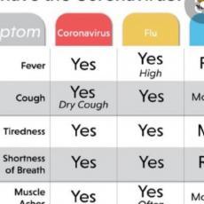Da li imate, grip, prehladu ili koronu? Tabela sa uporednim simptomima sve tri bolesti (FOTO)