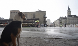 Danas naoblačenje sa kišom