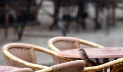 Danas oblačno i sveže, mestimično kiša