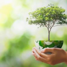 Danas se obeležava Dan zaštite prirode Srbije: Naša zemlja je oaza flore i faune