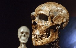 Današnji govor oblikovan ishranom predaka