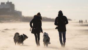 Danska najavilu postepenu i opreznu normalizaciju života od 15. aprila