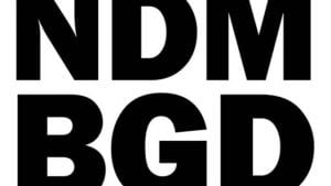 Deklaracija NDB: Ne pristajemo na lažirane izbore