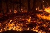Devet osoba osumnjičeno za podmetanje požara u Severnoj Makedoniji