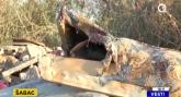 Divlje deponije niču u Šapcu VIDEO