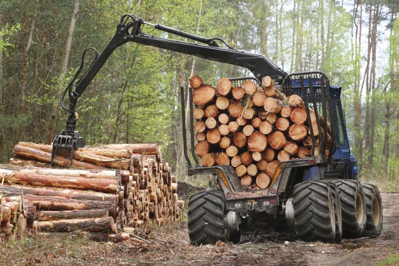 Do kraja godine isporuka ugovorenih količina drvnih sortimenata
