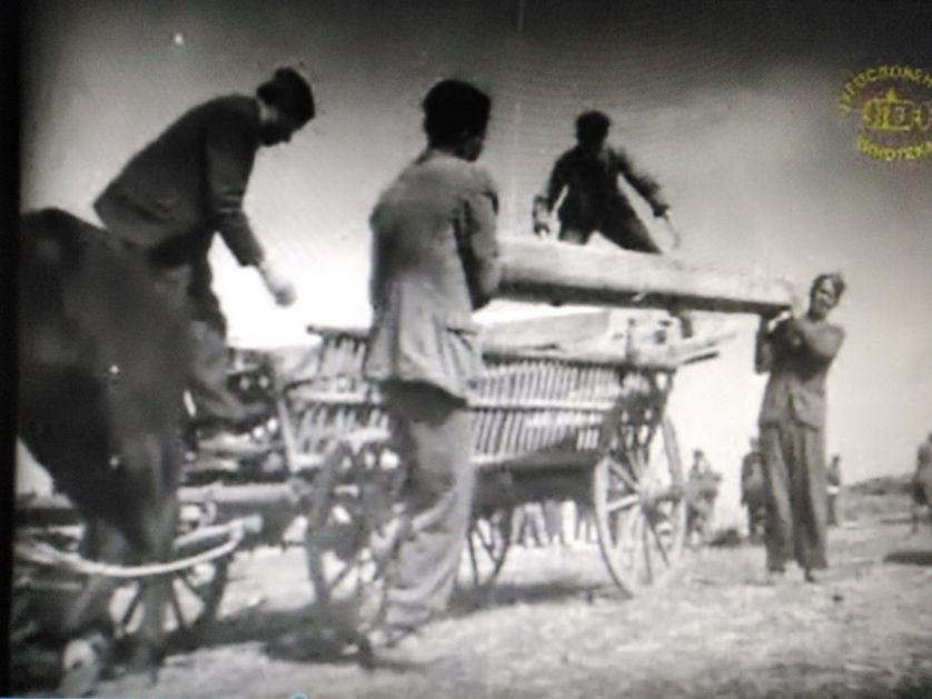 Dokumentarni film Za bolju žetvu u Narodnom muzeju Zrenjanin