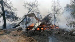 Dosad osam žrtava u požarima u Turskoj
