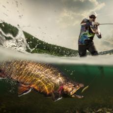 Druga najveća riba na svetu snimljena u Jadranu: Ribar na pola metra bio od ajkule veličine broda (VIDEO)