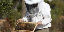 Država će nastaviti da podržava pčelare