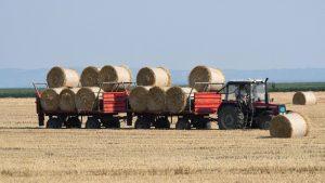Država je izgubila mogućnost da kreira bilanse hrane
