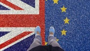 EU osudila produžetak grejs perioda za kontrolu hrane između Velike Britanije i Severne Irske