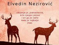 Elvedin Nezirović dobitnik nagrade Stevan Sremac