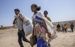 Etiopski premijer odbacio međunarodno mešanje u sukobe u njegovoj zemlji