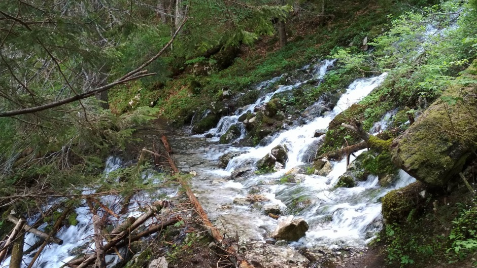 Evropski parlament: Ne gradite mini-hidroelektrane!
