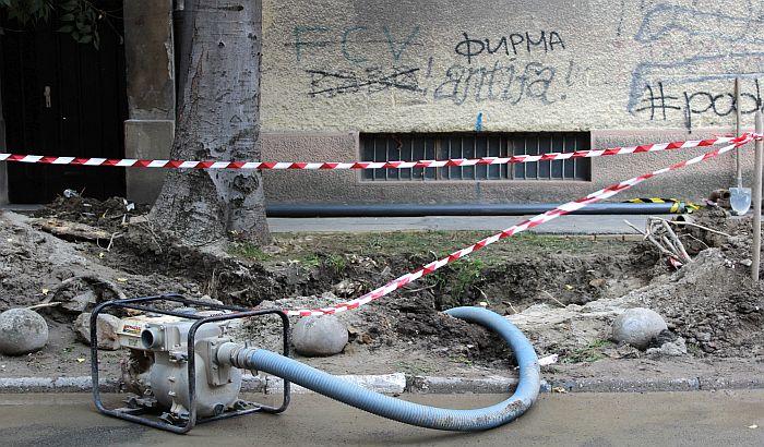 FOTO: Drvo oštetilo vodovodnu cev u Vojvode Mišića, mora da se vadi