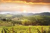 Francuske ratare i vinogradare od ljutih komšija odvajaće tampon-zone bez hemikalija