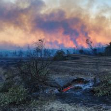 GORI HRVATSKA, VATRA IH NE PUŠTA IZ ČELJUSTI: Buknuo veliki požar kod Šibenika, kanaderi nadleću užarenu sredinu