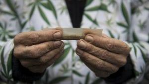 Gde i kako je legalizovana marihuana u svetu?
