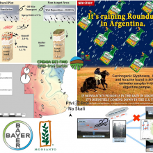 Glyphosate and atrazine in rainfall and soils in agroproductive areas of the pampas region in Argentina