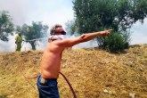 Gori Peloponez, vatrogasci pokušavaju da lokalizuju šumski požar FOTO