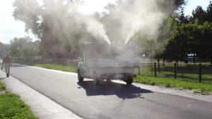 Gradska čistoća apelovala na građane da omoguće uništavanje komaraca