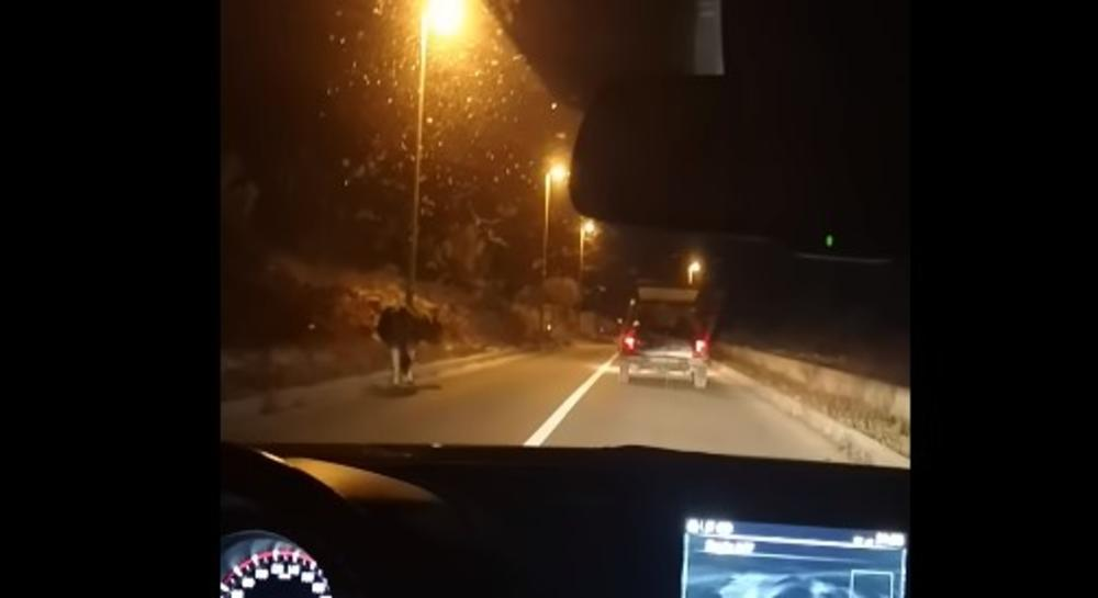 HRVAT KOLIMA ZLOSTAVLJAO KRAVU: Privezao je za vozilo i vukao dok skoro nije pala od iznemoglosti (UZNEMIRUJUĆI VIDEO)