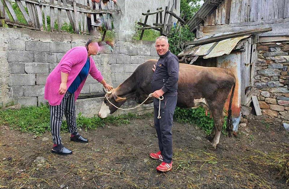Hajrat donirao kravu samohranoj majci
