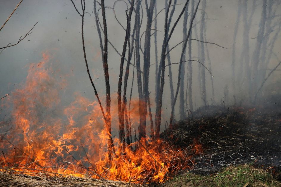 Hrvatska: Izgorelo 1.600 hektara