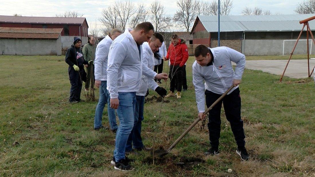 I Opština Plandište sadi drveće