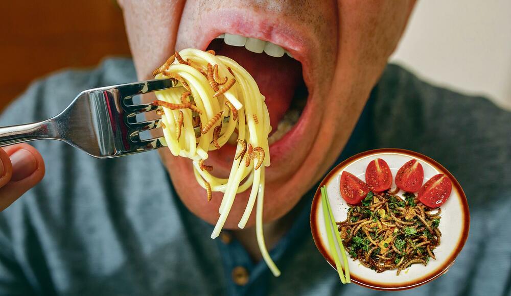 INSEKTI MASNI KAO SVINJETINA: Uskoro na tržištu slatkiši, keks, testenine i pljeskavice začinjeni larvama baršunastog crva
