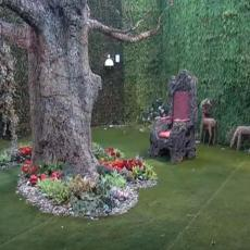 IZNENADNI SUSRET! Zadrugara u Rajskom vrtu dočekala ONA! Ko zna sa kim si bila, ništa nisam uradio