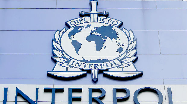 Interpol: Zaplenjena roba vredna 25 miliona dolara