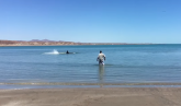 Ispred kuće na plaži ugledao je ajkulu i reagovao ovako VIDEO