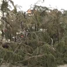 JAKO NEVREME KOD LAJKOVCA ZAUSTAVILO VOZ: Drvo palo na vagon, putnici se uspaničili i čekali da ih izbave