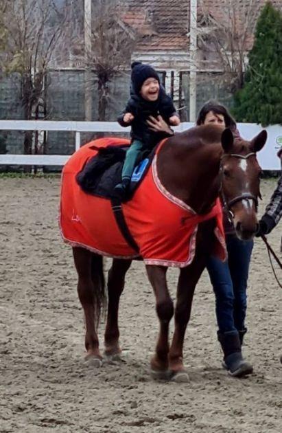 Jahanje i druženje sa konjima pomaže deci sa teškim neurološkim problemima