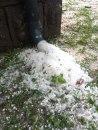 Jak grad opustošio sela u Šumadiji; na nekim mestima formiran beli pokrivač debljine 10 centimetara FOTO